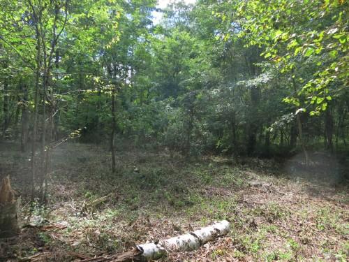 [土地] 諏訪郡原村原山 森に囲まれた337坪の土地 20180詳細ページへ